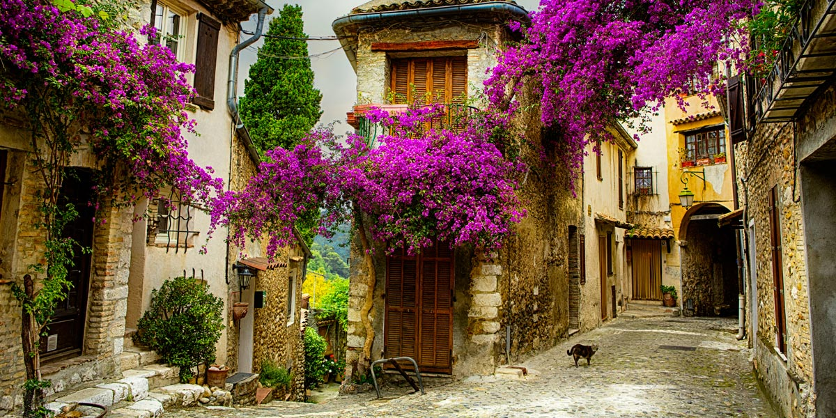Image result for spring in provence